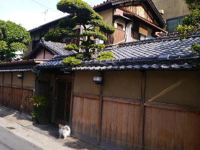 2014奈良4−8