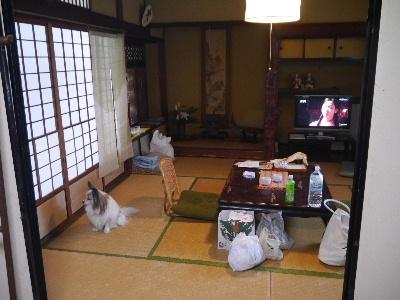 2014奈良4−12