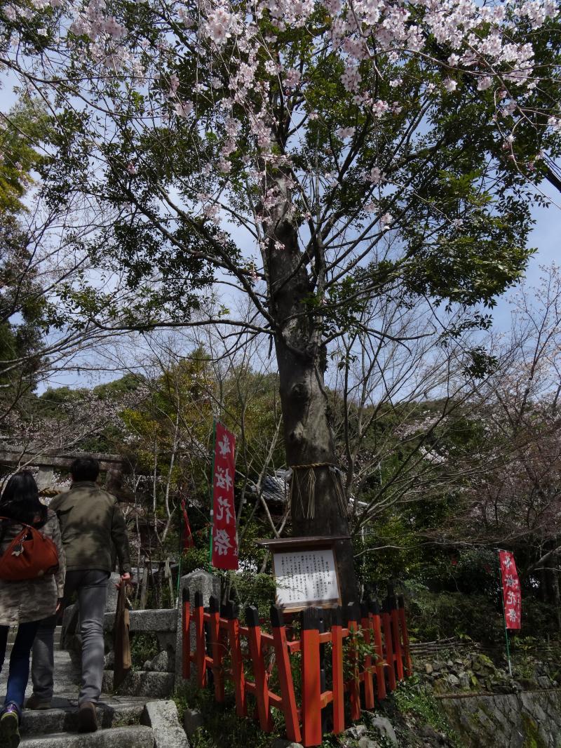 熊野若王子神社4