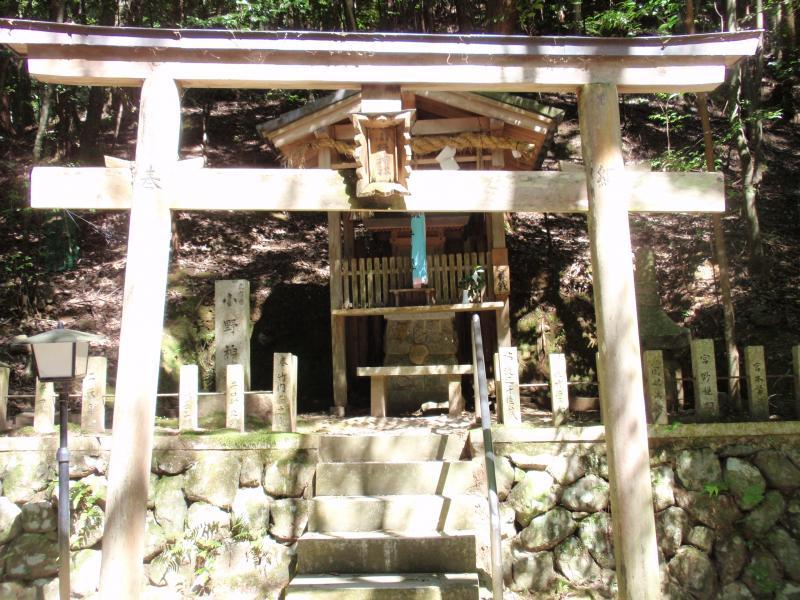 崇道神社10