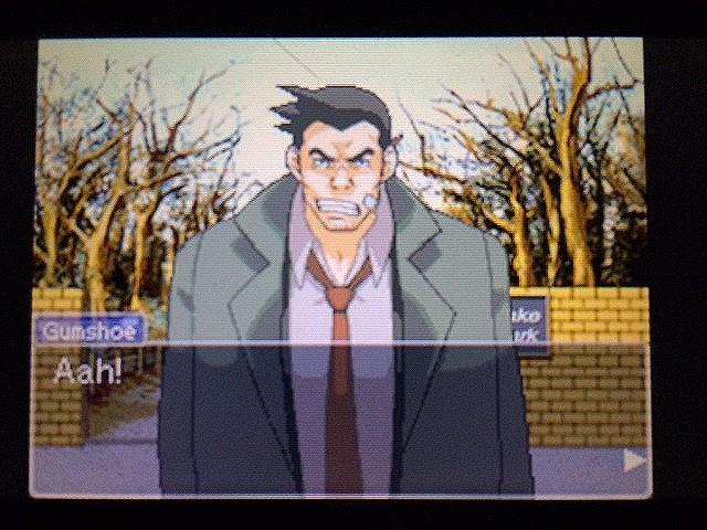 逆転裁判 北米版 ゴード・レイクと怒りのガムシュー20