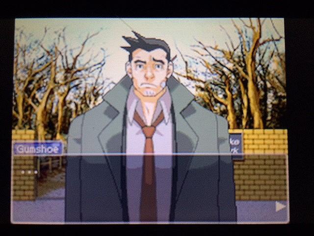 逆転裁判 北米版 ゴード・レイクと怒りのガムシュー19