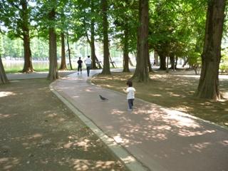 ブログ2 0601公園 (3)