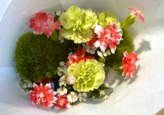 ブログ2 0618お花