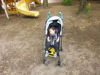 ブログ2 0622公園 (1)