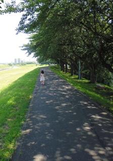 ブログ2 0713公園 (1)
