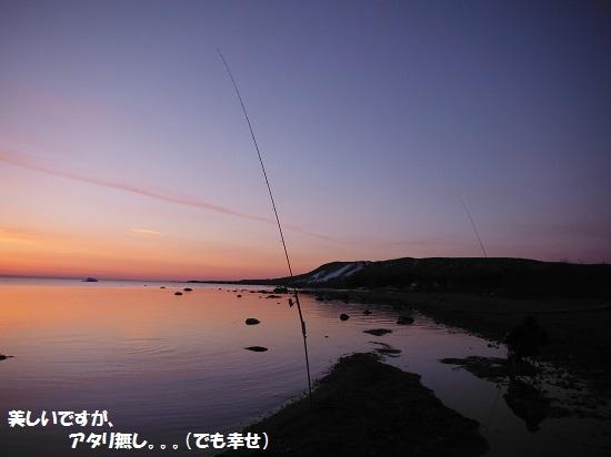 140412_PIC002.jpg
