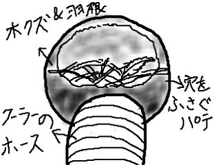 snap_mariyakko_20144217589.jpg