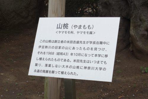 20140608_2.jpg