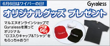 6_6_gyraless_goods.jpg