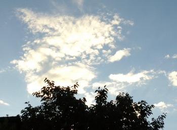雲2 (350x257)