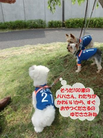 2014052512.jpg