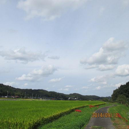 7-IMG_1612.jpg