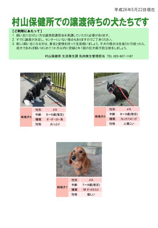 jouto_dog260522-2.jpg