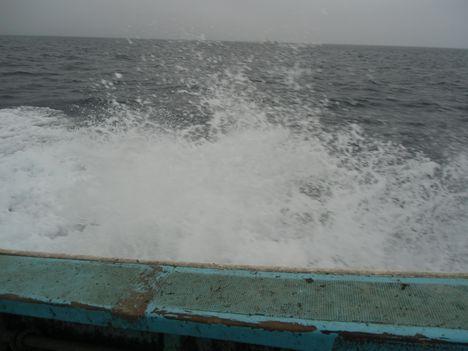 陸奥湾カレイ釣り2