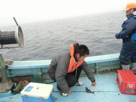 陸奥湾カレイ釣り5