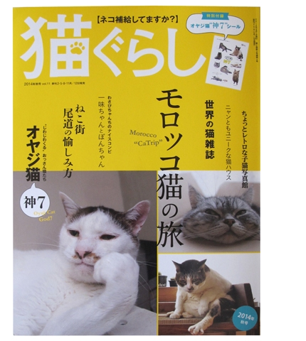 猫ぐらし1