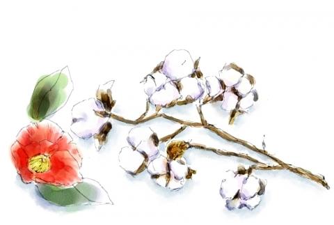 綿の木と椿