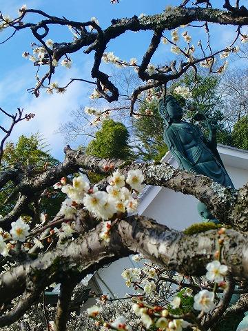 ゴーちゃんのお墓参り 14.3.18