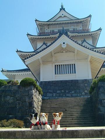 千葉城をバックに~ 14.4.8