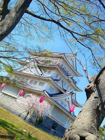 千葉城だ~! 14.4.8