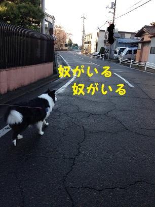 IMG_1469.jpg