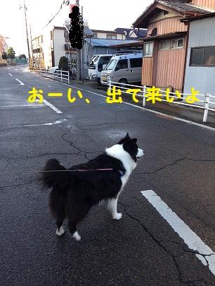IMG_1472.jpg