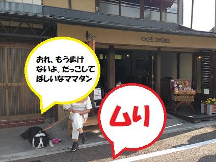 IMG_2169.jpg