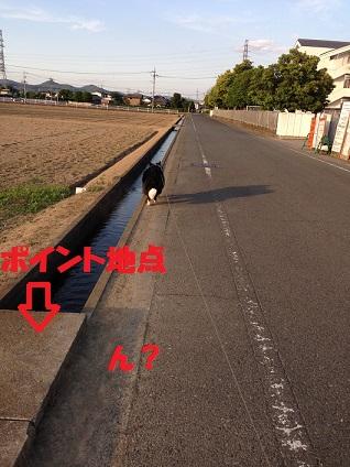 IMG_2566.jpg