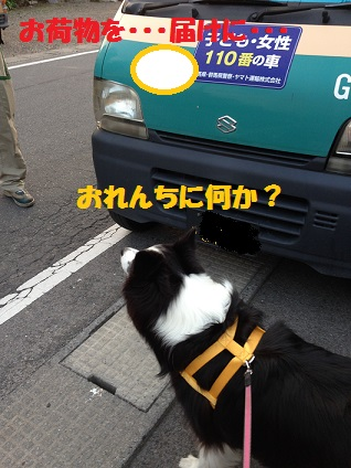 IMG_2668.jpg