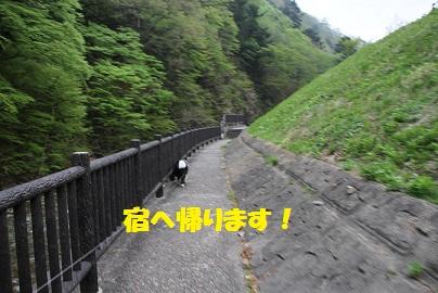 IMG_3419.jpg