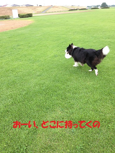 IMG_5093.jpg