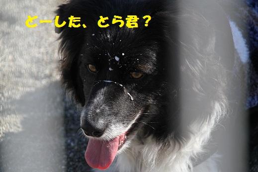 IMG_5362.jpg
