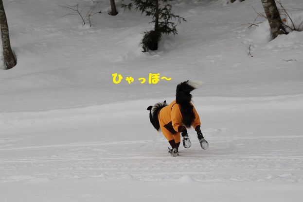 IMG_5444.jpg