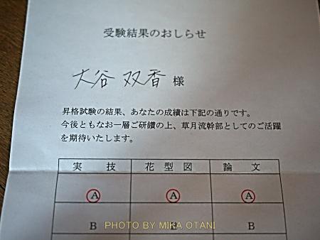 P1060177.jpg