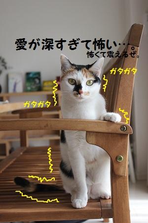 260330(3).jpg