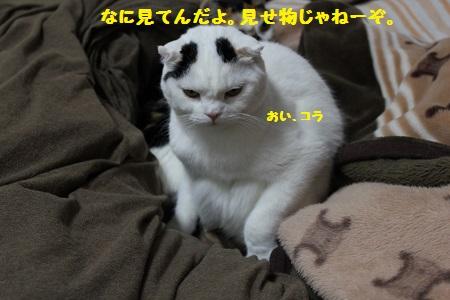 260519(1).jpg