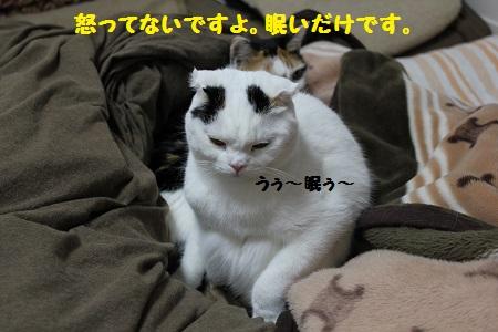 260519(2).jpg