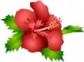 yjimage_20140713152503831.jpg
