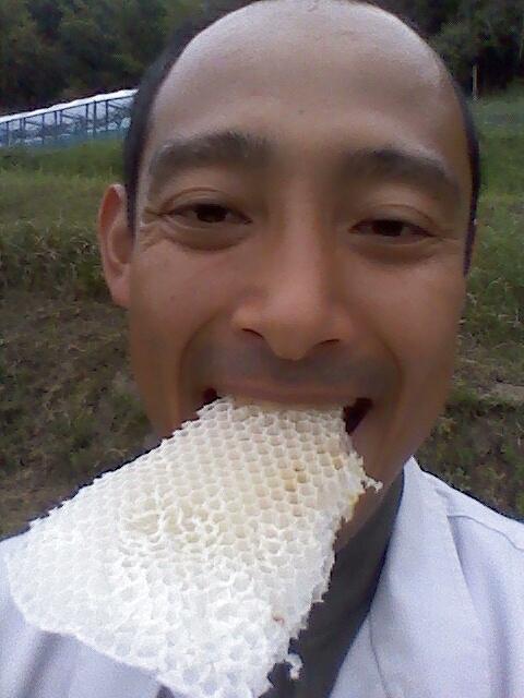 ハチミツ昼食