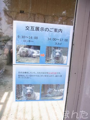 東武動物公園1_2