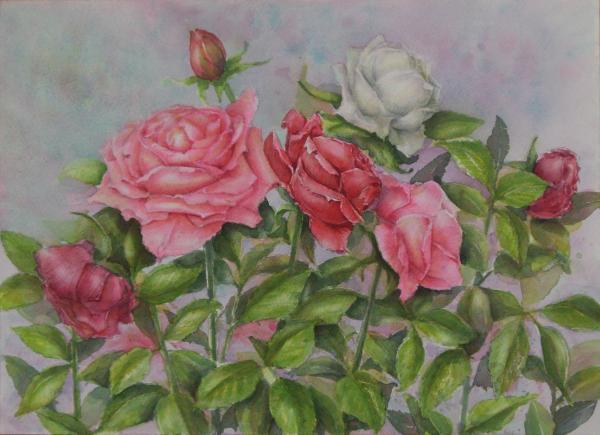 三色のバラ