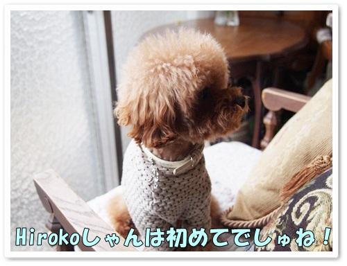 20140301_010.jpg