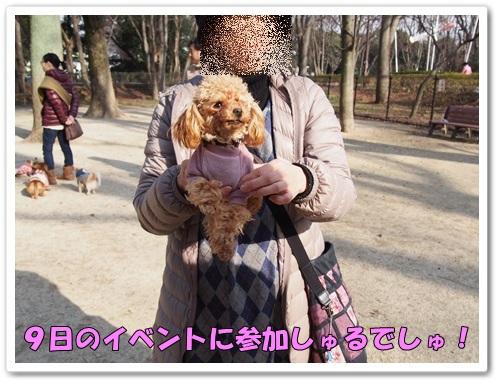 20140304_041.jpg