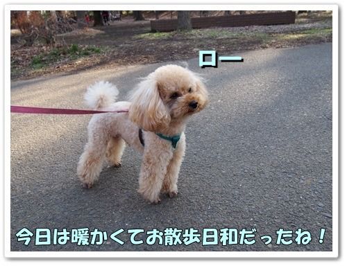 20140304_057.jpg