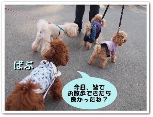 20140304_060.jpg