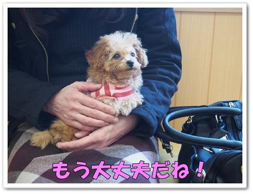 20140307_048.jpg