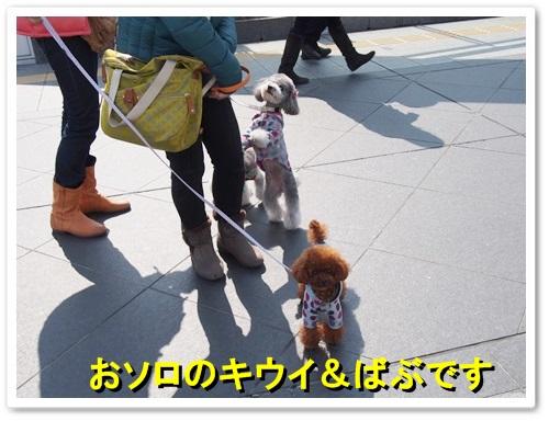 20140309_011.jpg
