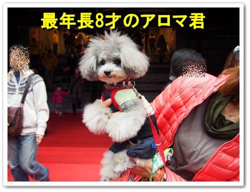 20140309_023.jpg