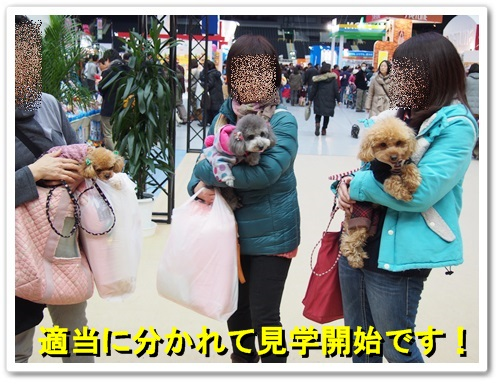 20140309_050.jpg